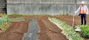 熊本県御船町で確認された、日奈久断層帯が地表に現れたとみられる断層=東北大提供