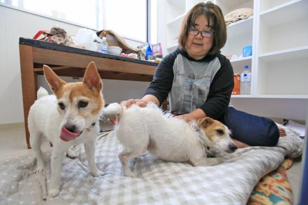 ペットと共に竜之介動物病院で避難暮らしを続ける水本和子さん(3日)