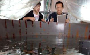 マグロを生むサバの実用化を目指す東京海洋大の吉崎悟朗教授(右)(千葉県館山市)