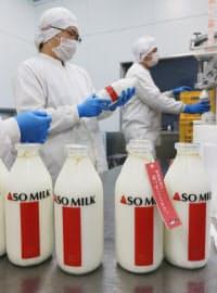 操業が再開し牛乳の瓶詰め作業をする阿部牧場の社員(5日、熊本県阿蘇市)