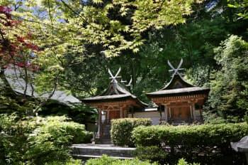 現存最古級の「春日造」とされる春日堂と白山堂は国宝に指定されている