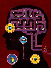 ビデオゲームに脳の働きを高める効果があることがわかってきた(C)Jude Buffum
