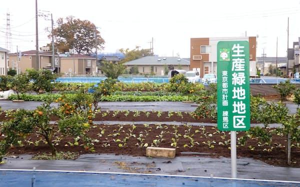 特別養護老人ホームの設置が計画されている生産緑地(東京・練馬)