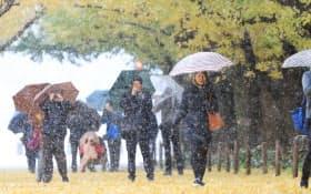 雪が降る中、イチョウ並木を歩く人たち(24日、東京都港区)