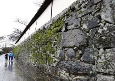 自然石を巧みに組み合わせる穴太積みの石垣(滋賀院門跡)