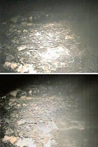 9日、福島第1原発2号機の原子炉格納容器内で、堆積物除去ロボットが撮影した画像。上が除去前、下が除去後=東京電力提供・共同