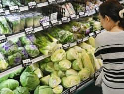 食品への支出は勤労者世帯で増えた(東京都内)