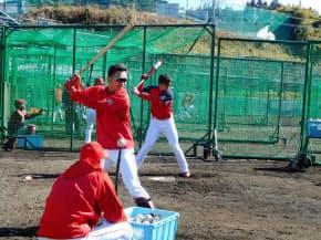 打撃練習をする鈴木誠也(中央)ら。実績のある人もない人も横一線のスタート