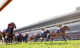 牝馬のファンディーナ(写真奥の8番)は7着だった(優勝は11番のアルアイン)=共同