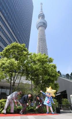 東京スカイツリータウン開業5周年を記念し、植樹する東武タワースカイツリーの嶋田取締役(左から3人目)ら(22日午前、東京都墨田区)