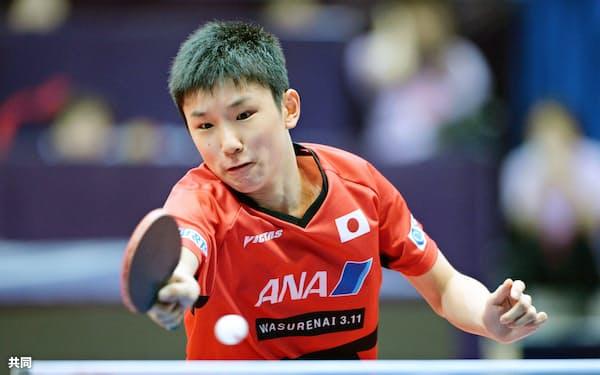 男子シングルス準決勝 プレーする張本智和(24日、成都)=共同