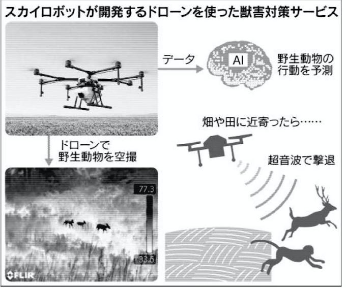 ドローン×AI、「優しい」獣害対策: 日本経済新聞