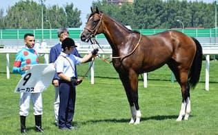 素質馬がそろった20日の新馬戦を勝ったモーリスの全弟ルーカス