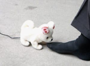 ネクストテクノロジー(北九州市)の犬型ロボット「はなちゃん」
