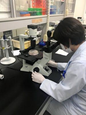 アンジェスは今夏、資金を効率的に使うため事業を絞り込んだ(大阪府茨木市の研究所)