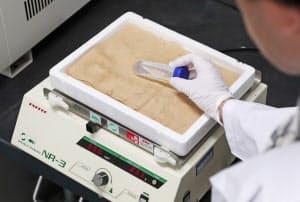 肺の一部と試薬が入った容器を装置で振動させて透明化する