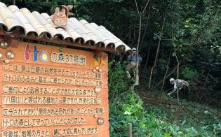 丸紅新電力は電気料金の一部を「トトロのふるさと基金」の森林保全活動に寄付する