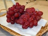 長野県果樹試験場が開発したブドウの新品種。実が赤いのが特徴。