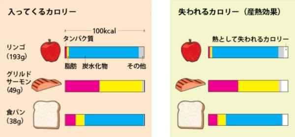 同じカロリー数でも食品の成分構成は異なる(左)。消化の過程で失われるカロリー(主に熱となるので「産熱効果」という)は脂肪や炭水化物よりもたんぱく質で大きい(右)