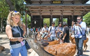 訪日外国人でにぎわう奈良公園(奈良市)