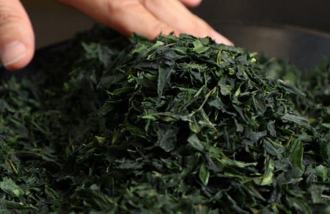 使用するのは抹茶の原料、てん茶。長時間かけて水出しする