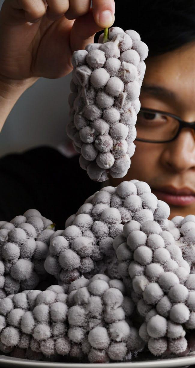 収穫期とずれていた中華圏の中秋節や旧正月に狙いを定める(大阪市東住吉区)