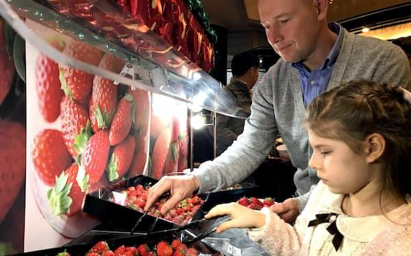 「ザ・ラウンジ」では3種類のイチゴを食べ比べできる