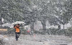 雪が舞うなか公園内を歩く人(22日午後、東京都千代田区)