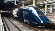 上越新幹線を走る現美新幹線。写真家の蜷川実花さんがデザインした