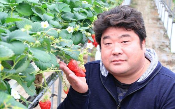 ふくなが・よういち 1971年大阪市生まれ。高校卒業後、専門学校を経てアミューズメント会社勤務。2012年に退職、千早赤阪村でイチゴ栽培を始める。産地復活プロジェクトの一環で農家育成の講師も務める。