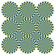 実験に使った錯視画像。AIも人と同じように回転していると錯覚した(北岡教授提供)