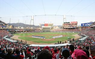 プロ野球が開幕し、広島―中日戦を観戦するファンで埋め尽くされたマツダスタジアム(30日、広島市)=共同