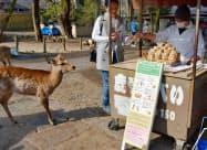 鹿せんべいの販売所に設置された、訪日外国人客らに向けた看板(3日午前、奈良市)=共同
