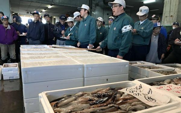 17年の平均卸値は2年前に比べて8割程度高い(函館市水産物地方卸売市場=北海道函館市)