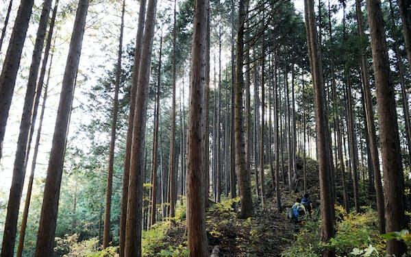 「森林環境税」が創設される