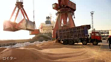 大豆が語る米中の経済相互依存