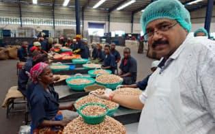 ETGのモザンビーク工場は、カシューナッツの一大輸出拠点に