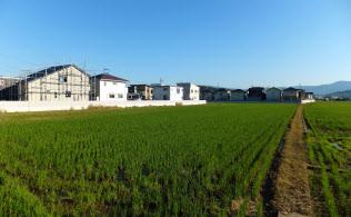 和歌山市の岡崎地区では急速に農地転用が進んだ(2017年11月)