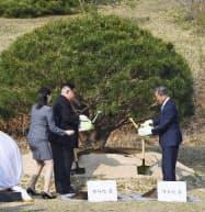 記念に松を植樹する文在寅大統領(右)と金正恩委員長(27日、板門店)=韓国共同写真記者団・共同