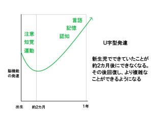 赤ちゃんの「U字型発達」のイメージ