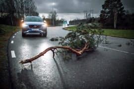 路上に危険物があった場合などにクラウド経由でほかの車両に知らせる仕組みを他メーカーと共有する(ボルボ・カー提供)