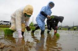 福島県大熊町で営農再開に向けて始まった田植え(9日午前)=共同