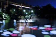 千葉公園内の池などにプロジェクションマッピングでハスを映し出す。(イメージ)