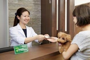 ペット保険に加入していれば、ペットの急なケガや病気のときに金銭的不安が軽減される