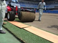 日産スタジアムは天然芝からハイブリッド芝へ変わる(26日)