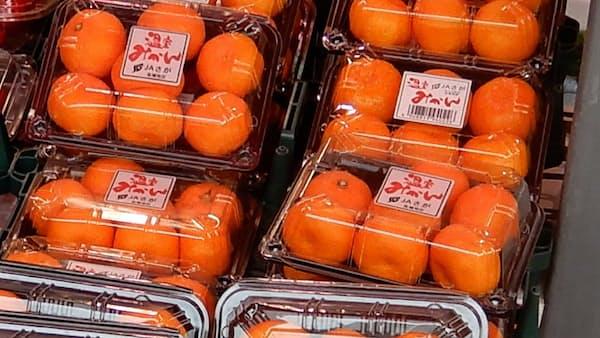 西日本豪雨、農作物被害相次ぐ 小ネギやモモ 秋以降供給減も