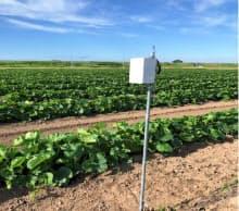 西松建設が開発した農業向け温度・日照管理システム