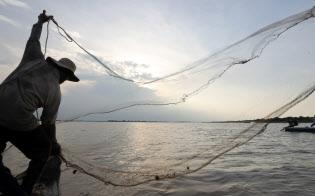 メコン川支流のトンレサップ川。漁師は日の出から日没まで網を投げ続ける