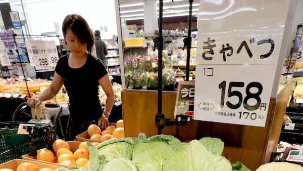 猛暑で野菜高騰 キャベツ店頭価格2倍も