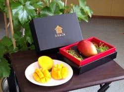 東洋インキは「あまみごえ」ブランドでマンゴーを栽培、1個2000~3000円で販売している